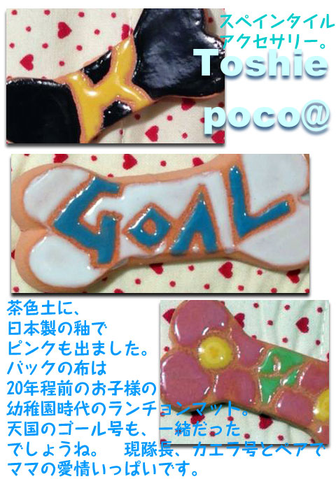 20130425toshi02.jpg