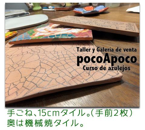 DSCF0545teyaki.jpg