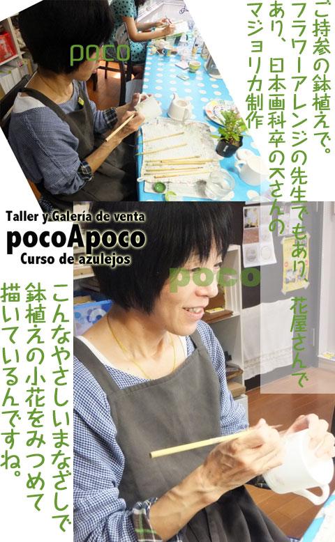 DSCF4246ka.jpg