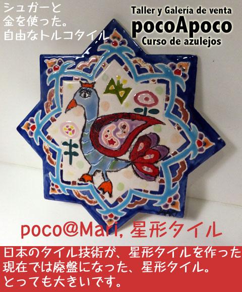 DSCF4497marihosi.jpg