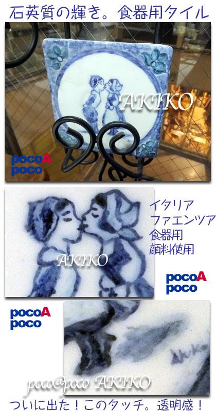 DSCF4875aki.jpg