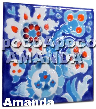 amanda120121a.jpg